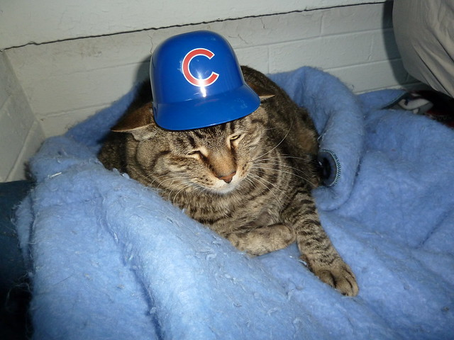 Parker loooves the Cubs