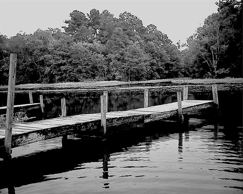 water digital landscape lowresolution stream florida jacksonville pointandshoot lowrez