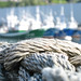 Playing with Rope and DOF - Port Bermeo, Spain