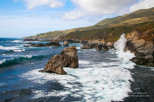 ocean california park travel blue vacation landscape monterey rocks surf state pacific seagull gull carmel northern garrapata darvin atkeson darv liquidmoonlightcom highlanes