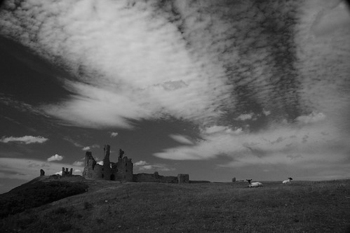 Dunstanburgh Castle and sheep B&W