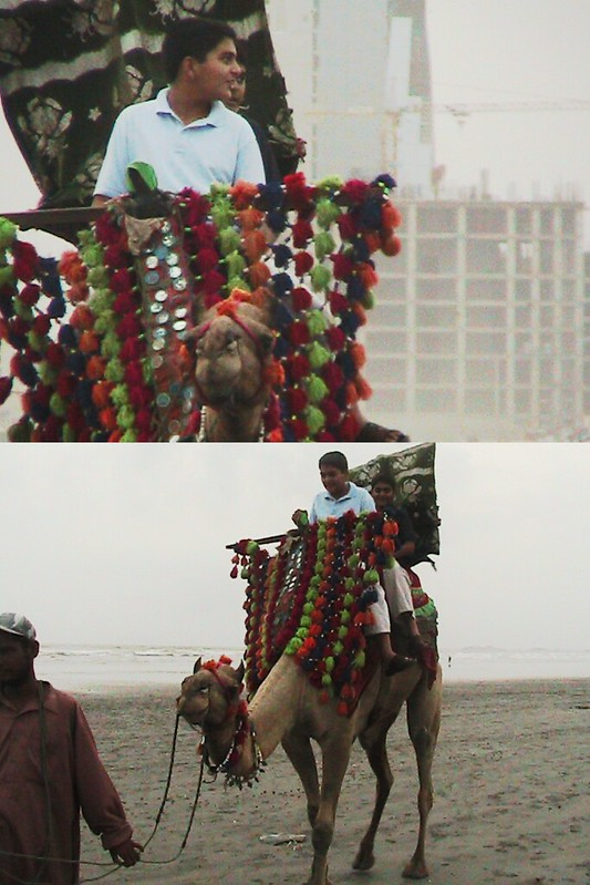 My brothers ride a camel on a beach in the motherland.
