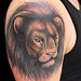 Lion cover up tattoo