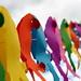 paper parrots (sooc) by Glenn 07