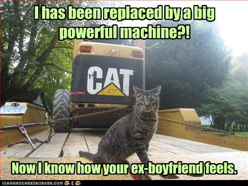 funny-pictures-cat-is-replaced-by-machine