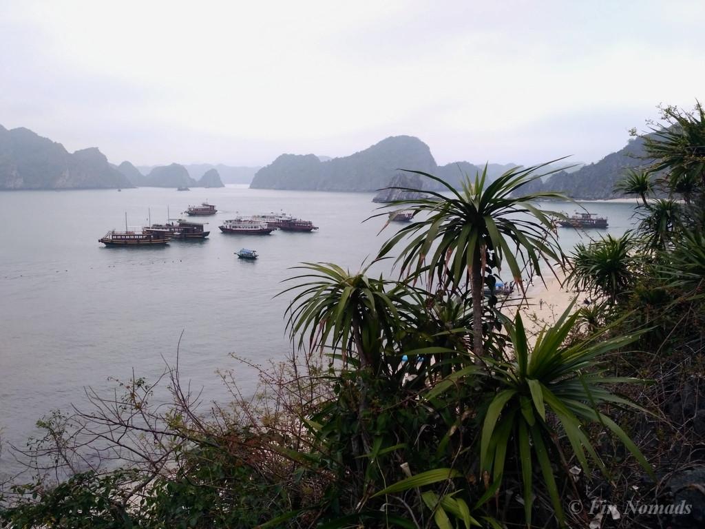 Monkey island halong bay 2
