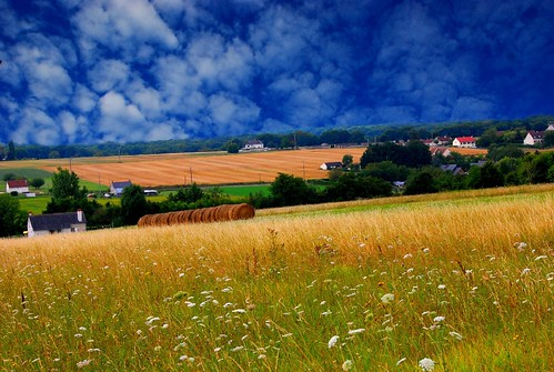 france nature field landscape nikon bluesky loirevalley d40x natureloving centeroffrance