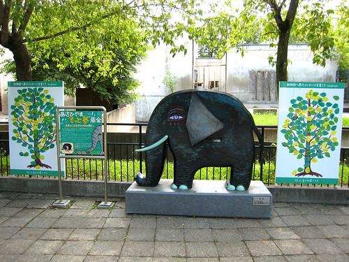 旭川动物园 - flickr 上的相片集