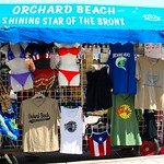 Orchard Beach, Shining Star of the Bronx