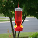 Garden Song® Lantern Hummingbird Feeder