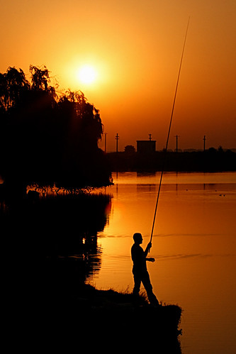 sun lake tree water silhouette sunrise fire gold fishing fisherman willow contrejour