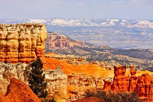 landscape utah rocks brycecanyon