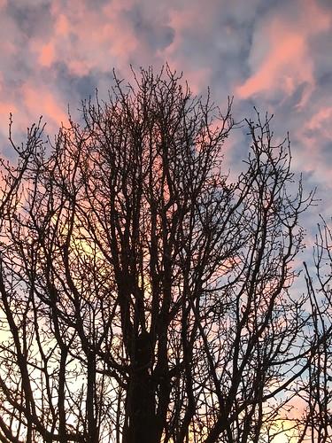2017 0217 feb pad sunset clouds