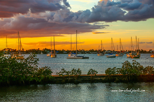 sun sunset southfork river stlucieriver saiolboats water landscape seascape shepardspark stuart florida nature mothernature usa