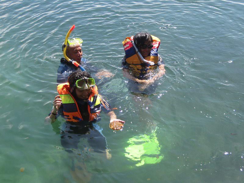 Snorkeling @ Kakaban