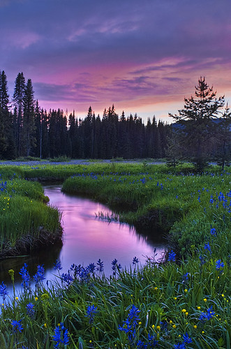 Packer Meadow Sunset
