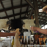 Wine Tasting at Ithaca's Farmer's Market - New York