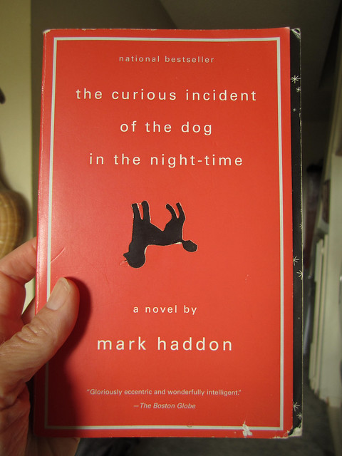 My review of the Curious Incident Of The Dog In The Night Time theatre production