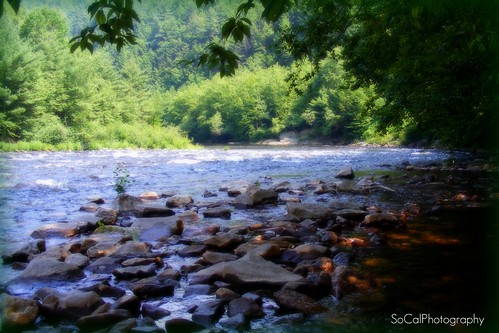 trees nature water river rocks pennsylvania scenic explore pa poconos lehigh explored