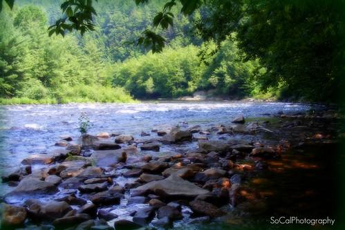 trees nature water river rocks pennsylvania scenic explore pa poconos lehigh explored