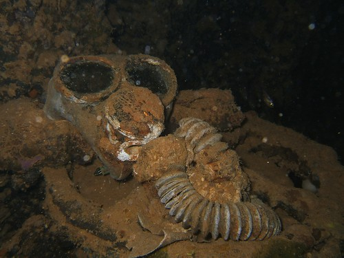 Kiyosumi Maru - Gas mask, Chuuk 2009