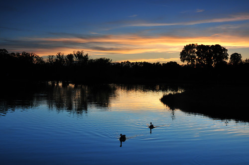 park blue sunset canada creek geese wichita chisholm chisholmcreekpark