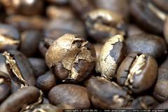 just roasted indonesian sulawesi toraja coffee