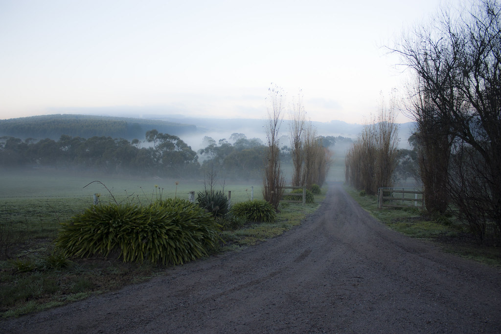 Gum Gully Bed And Breakfast