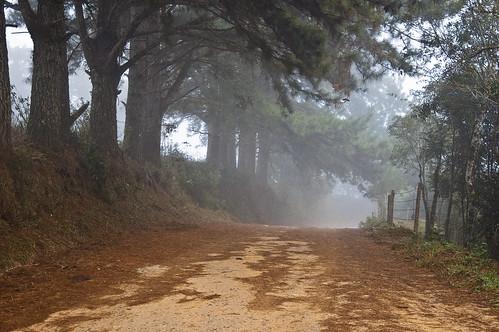 Caminhos da Serra-Piraquara