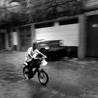 riding in the rain [BW]