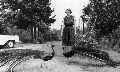 Flannery O'Connor and peacock