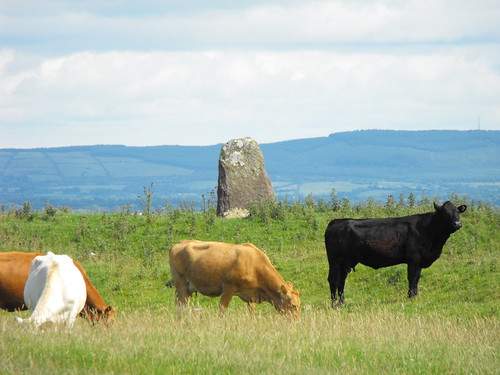 ireland king barrow pagan standingstone roscommon rathcroghan dathi