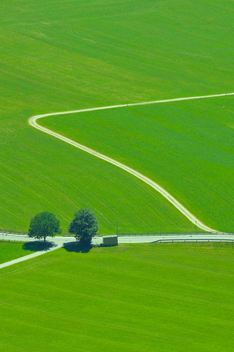 trees green canon austria österreich roads tyrol canonef70200mmf28lusm canoneos50d canon50d wiesing