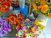 Bright summer flowers at San Francisco's Ferry Building