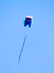 kite sports, individual sports, sports, windsports, blue, sport kite,