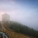 Into the Mystic Fog