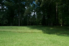 Moundville Archeological Park