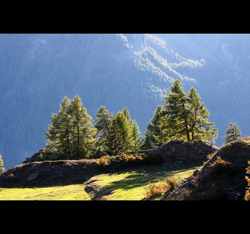 paesaggi alpini by galadh_007