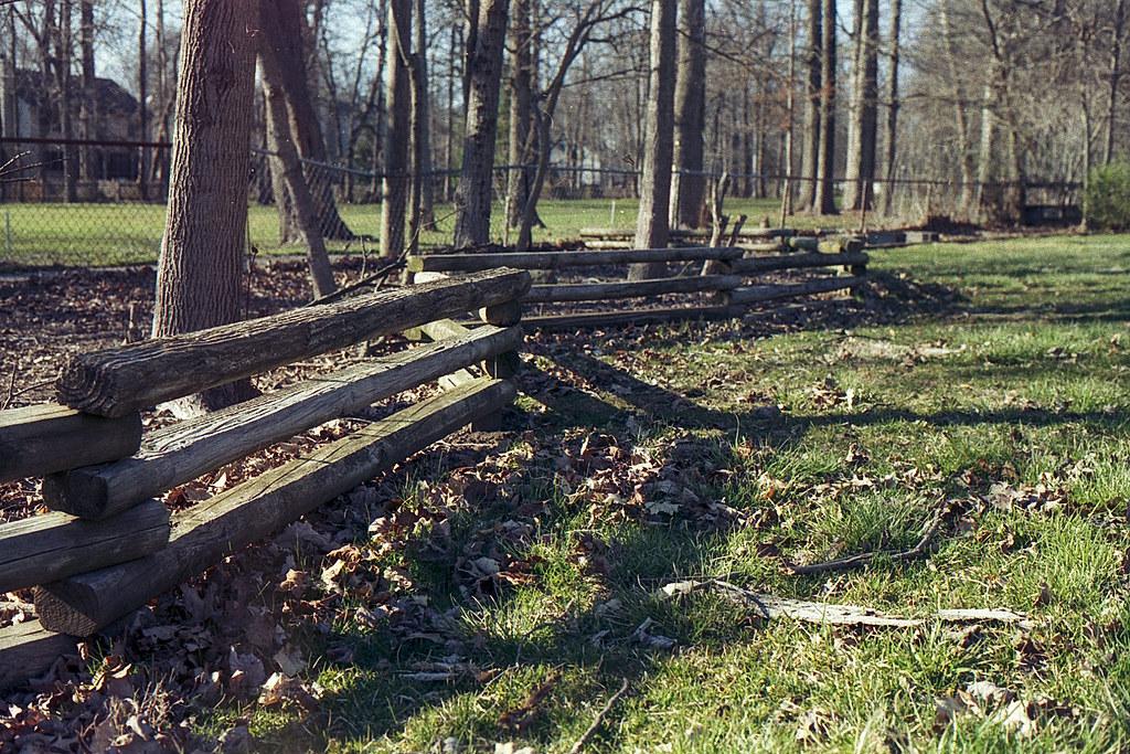 Back yard log fence