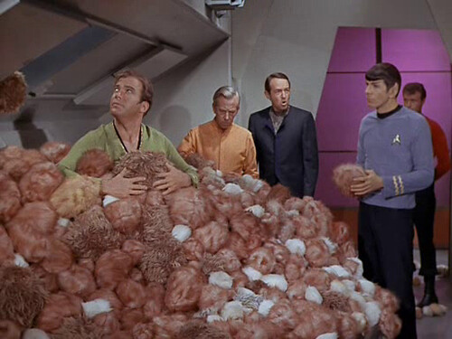 Tribbles Spock and Kirk Star Trek TOS