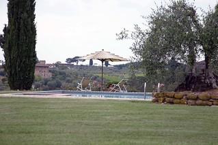 Salvadonica
