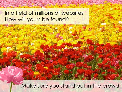 Use Search Engine Optimization Like A Pro