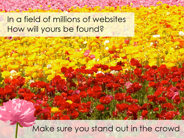In a Field of Websites, Will Yours Stand Out?