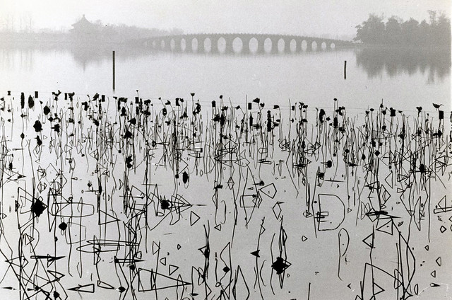 Dead Lotus Flowers on the Kunming Lake, Former Imperial Summer Palace, by René Burri 1964