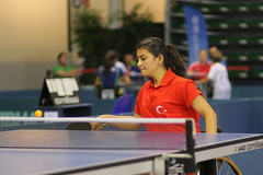 individual sports(1.0), table tennis(1.0), sports(1.0), competition event(1.0), ball game(1.0), racquet sport(1.0), para table tennis(1.0), tournament(1.0),