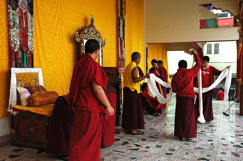 Tibetan Buddhist monks and lamas leaning up at the end of the Amitayus - Hayagriva Long Life Blessing and Initiation, young monks folding up the long ceremonial khatags, overseen by two senior Tibetan Buddhist monks, Boudha, Kathmandu, Nepal by Wonderlane