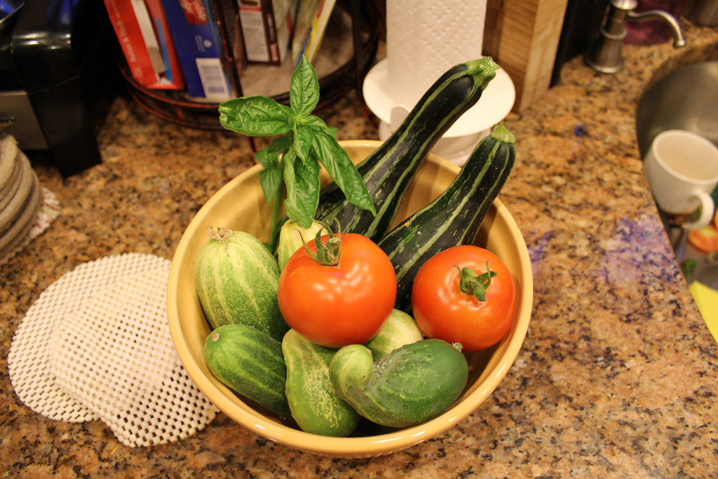 Vegetable Garden 043