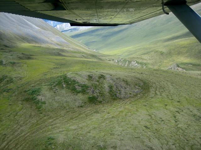 Green Alaska Summer