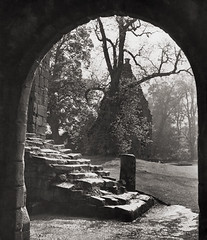 Fountain Abbey, Yorkshire 1935, by E.O. Hoppe