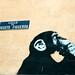 El mono le pregunta a Dios? II by lustg